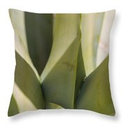 Giant Agave Abstract 7 Throw Pillow