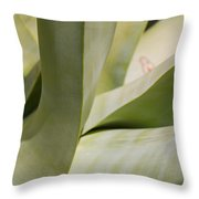 Giant Agave Abstract 8 Throw Pillow