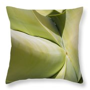 Giant Agave Abstract 9 Throw Pillow