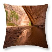 Giant Alcove Coyote Gulch - Utah Throw Pillow