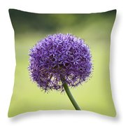 Giant Allium Flower Throw Pillow