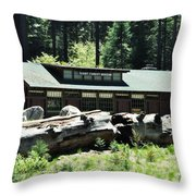 Giant Forest Museum Throw Pillow
