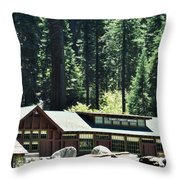 Giant Forest Museum Portrait Throw Pillow