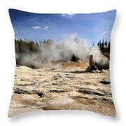 Giant Geyser Group Throw Pillow