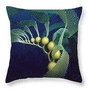 Giant Kelp Macrocystis Pyrifera Detail Throw Pillow