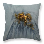 Giant Kelp On The Beach Throw Pillow