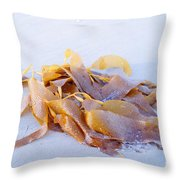 Giant Kelp Washed Ashore Throw Pillow
