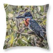 Giant Kingfisher Throw Pillow