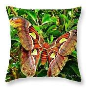 Giant Moth Throw Pillow