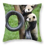 Giant Panda Cubs Throw Pillow