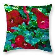 Giant Poppies Throw Pillow