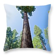 Giant Sequoia In Mariposa Grove In Yosemite National Park-california  Throw Pillow