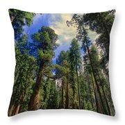 giant sequoias sequoiadendron gigantium yosemite NP Throw Pillow