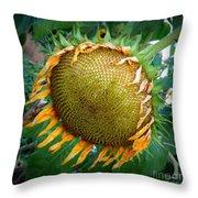 Giant Sunflower Drama Throw Pillow