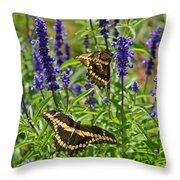 Giant Swallowtail Butterfly Couple Throw Pillow