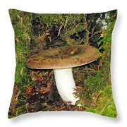 Giant Toad Stool Throw Pillow