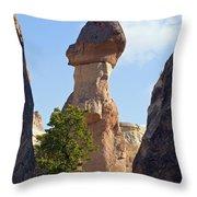 Giant Toadstool Throw Pillow