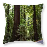 Giants And The Road Throw Pillow