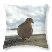 Giants In The Sky Throw Pillow