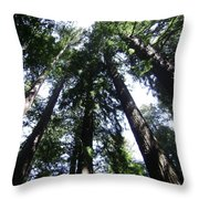 Giants Of The Forest Throw Pillow