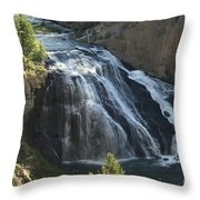 Gibbon Falls I Throw Pillow