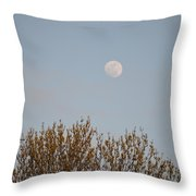 Gibbous Nature Throw Pillow