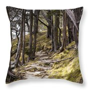 Gibraltar Rock Trail Wisconsin Throw Pillow