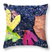Gift From The Trees Throw Pillow