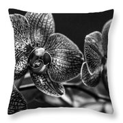 Gift Of Flowers Throw Pillow