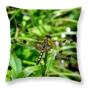Gifts From Muck Bog 2 Throw Pillow