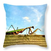 Gigantor Throw Pillow