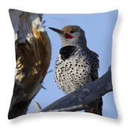 Gilded Flicker Throw Pillow