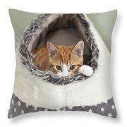 Ginger Kitten In An Igloo Throw Pillow