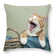 Ginger Kitten Yawning Throw Pillow