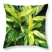 Ginger Lily. Alpinia Zerumbet Throw Pillow