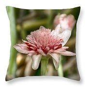 Ginger Plant Flower Throw Pillow