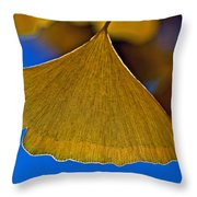 Gingko Leaf Losing Chlorophyll Throw Pillow