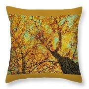 Ginkgo Tree  Throw Pillow