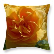Ginny's Rose In The Sun Throw Pillow