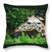 Giraffe-09028 Throw Pillow