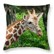 Giraffe-09034 Throw Pillow