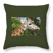 Giraffe Beauty Throw Pillow