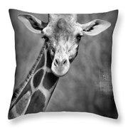 Giraffe Face In Black And White Throw Pillow