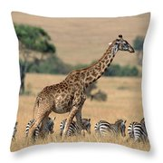 Giraffe Giraffa Camelopardalis Throw Pillow