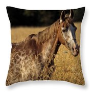Giraffe Horse Throw Pillow