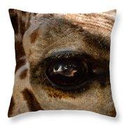 Giraffe Look Into My Eye Throw Pillow