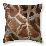 Giraffe Patterns Throw Pillow