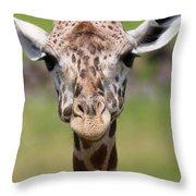 Giraffe Peek A Boo Poster Throw Pillow