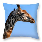 Giraffe Portrait Close-up. Safari In Serengeti. Tanzania Throw Pillow