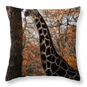 Giraffe Posing Throw Pillow